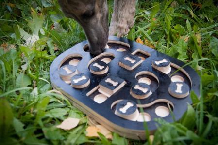 Головоломка для собак