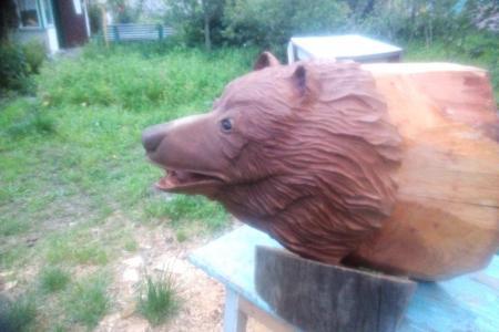 Голова медвежья